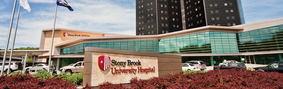 Suny Stony Brook Calendar