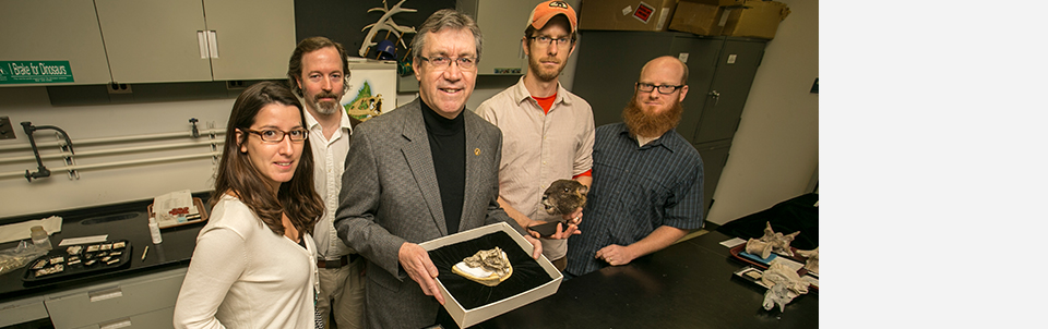 Stony Brook paleontologist Dr. David Krause and colleagues publish findings of an ancient, bizarre groundhog-like mammal<br>in Nature