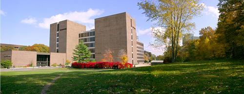 Stony brook university phd programs-6098